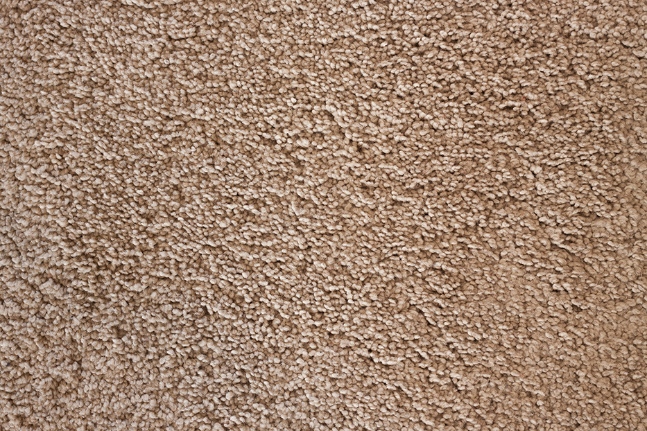 How to Decide the Right Carpet For Your Home